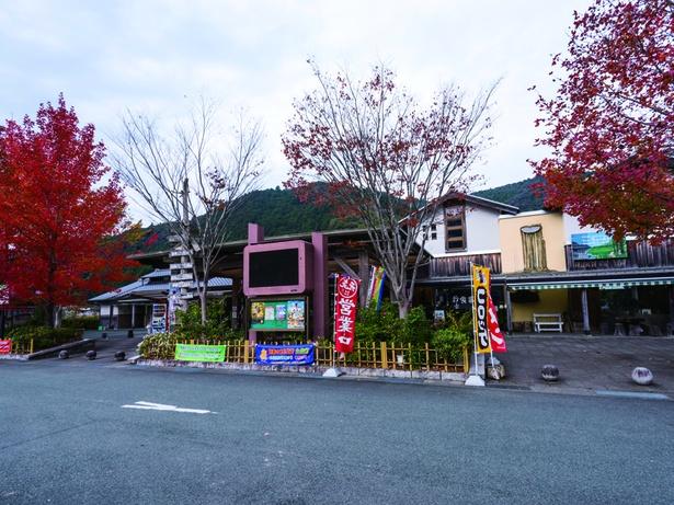 2019年「道-1グランプリ」でグランプリに選ばれた道の駅 土佐さめうら(⾼知県⼟佐郡⼟佐町)