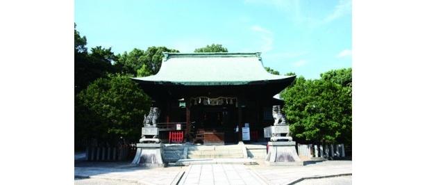 自然豊かな末森山の木々に囲まれて鎮座する、城山八幡宮の本殿