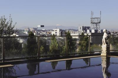 瀬田温泉 山河の湯/サンセットや多摩川の夜景が楽しめる混浴展望温泉。富士山が見えやすいのは午前中だ