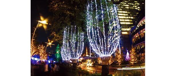 街を彩るイルミネーションは、今年も変わらず華やかだった