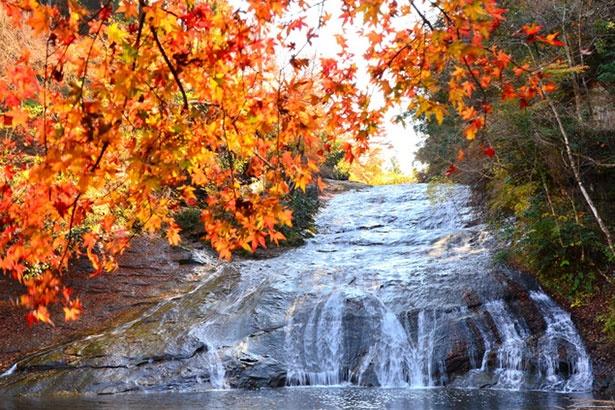 養老渓谷に位置する粟又の滝。房総半島を代表する滝で正式名称は「高滝」