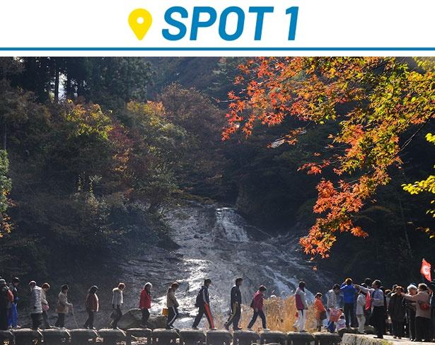 粟又の滝のすぐ近くまで向かうことができるので、その迫力を思う存分、体感できる