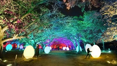 チームラボ福岡城跡光の祭2019-2020 / 新たな4作品を含む、計7作品を展示