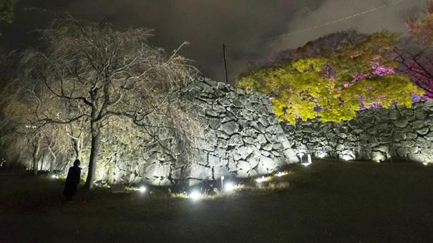 呼吸し呼応する石垣 - 石城跡 / Breathing Resonating Stone Wall - Fukuoka Castle Ruins