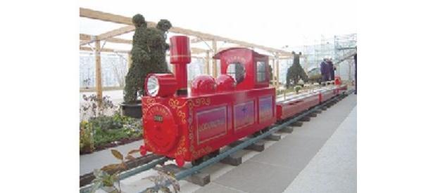 「天空の広場」を回るつばめ電車