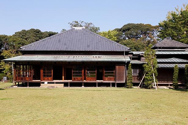 広々とした芝生に映える書院造りの戸定邸