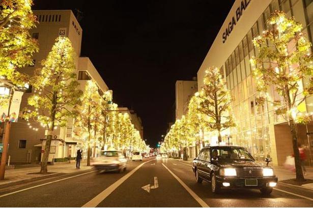 佐賀市街地 / きらめく光で彩られた佐賀市中央大通り