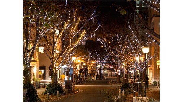 熊本市中心市街地 / 散策が楽しくなる光のパレード