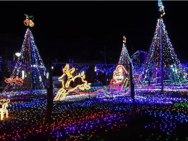 清武総合支所前芝広場 / 恒例のイルミネーションが今年も開催