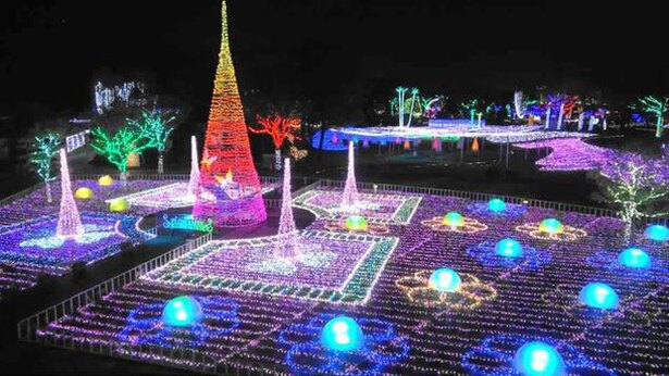 フローランテ宮崎 / 宮崎の冬を代表するイルミネーション