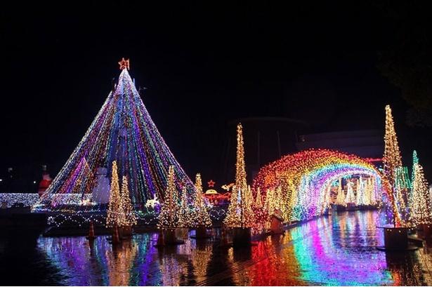 【写真を見る】サンA川南文化ホール前広場 / 色とりどりの輝きが美しい川南町の冬の風物詩