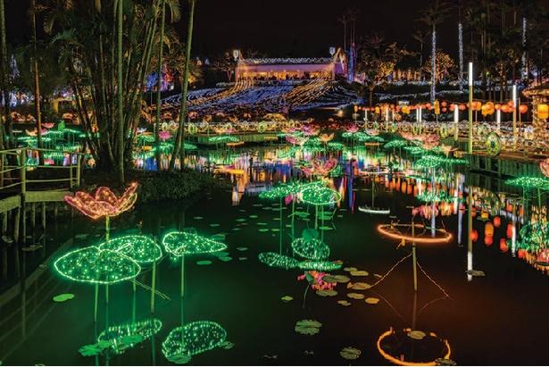 YCVB 特別賞(主催者特別賞)を受賞した沖縄県「東南植物楽園 ひかりの散歩道」