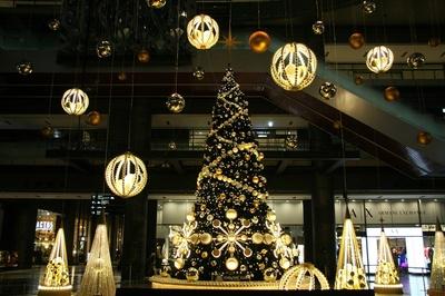 グランフロント大阪に「Brilliant Tree」が登場
