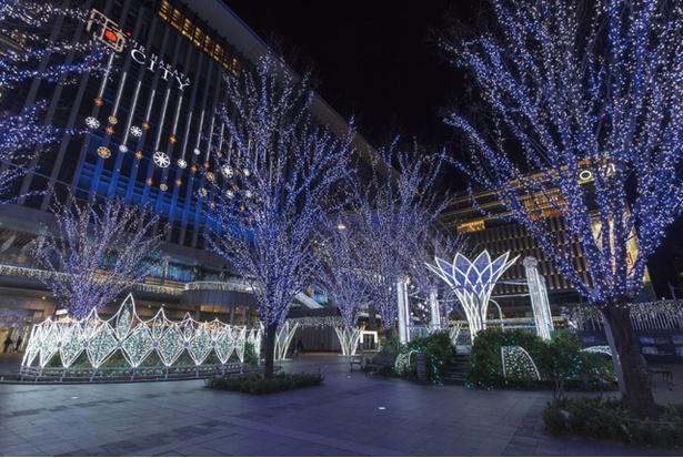 光の街・博多 / JR博多駅前広場に約80万球の壮大なイルミネーションが灯る