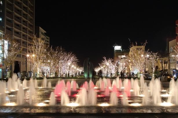 夜の公園を12万球の輝きでライトアップ / みなと大通り公園
