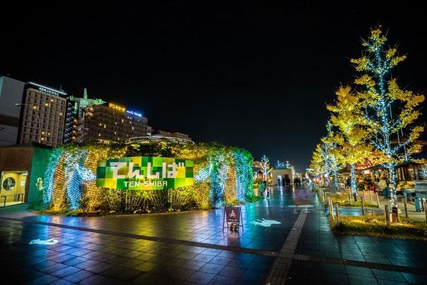 入口床面の光の動物シルエットが映し出されるのも、天王寺動物園のあるこのエリアならではの演出。「Welcoming あべてん ウィンタープレゼント 2019」