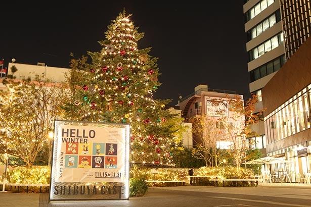 オーナメントが飾り付けられた大きなクリスマスツリーが登場
