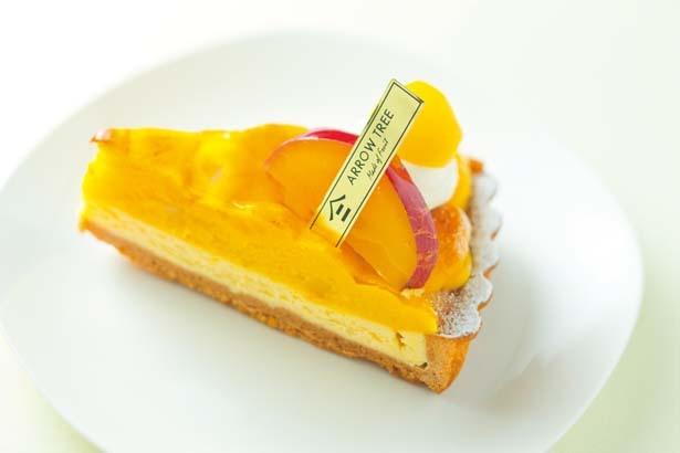 【写真を見る】スイートなポテトチーズタルト(480円)。チーズとスイートポテトの味のコントラストが見事/ARROW TREE なんばウォーク店