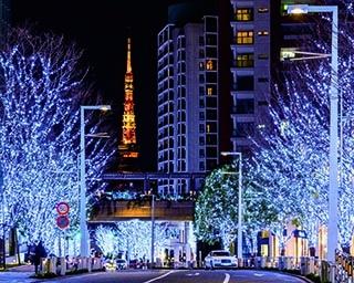 六本木のイルミネーション4選!東京タワーをゴールに美麗イルミを満喫