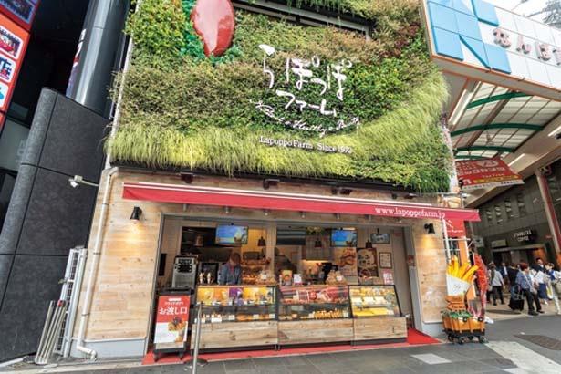 壁を植物でおおい、畑を連想するようなナチュラルな外観に/らぽっぽ ファーム 大阪ミナミ店