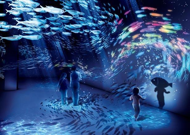 巨大な魚群が動きだす瞬間のダイナミズムを魚影のインタラクションで体感
