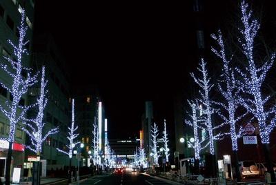 通り沿いにある28本の街路樹をイルミで装飾 / 筑紫口中央通り