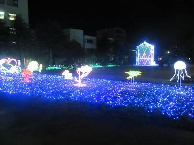30万球の光り輝くイルミで田井庄池公園が華やかに