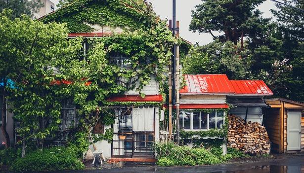 【写真】北海道・札幌の路地裏に佇む珈琲店「森彦」