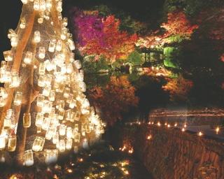 秋冬おでかけシーズン!11月と12月に開催される山口のイベント2選