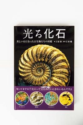【写真を見る】日東書院発行「光る化石」(3200円)。光沢のある化石を集めた写真集/ホホホ座 浄土寺店