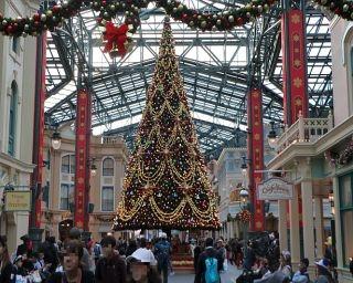 TDL中央通りがクリスマス仕様に!夜は音楽と光でロマンティックに