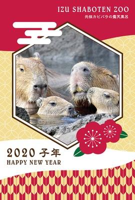 2020年「子(ねずみ)年」を記念して作られたカピバラの「オリジナル年賀状テンプレート」