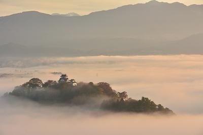 幻想的な姿を現す越前大野城。雲海の下には……