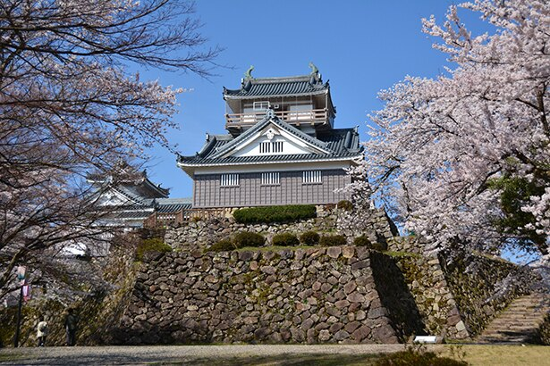 亀山(249m)の頂上にある天守。内部は歴代城主の遺品を展示する資料館になっている
