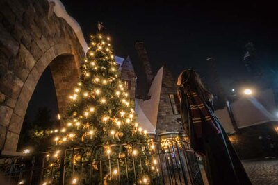 2020年1月13日(祝)まで開催する「ホグズミード村のクリスマス・ツリー」。呪文を唱え魔法をかけよう/ユニバーサル・スタジオ・ジャパン