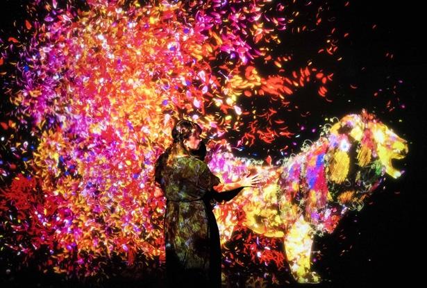 壁に映るのは、花が生えた動物。手を触れると花が散るなど、幻想的な作品 / 『花と共に生きる動物達』