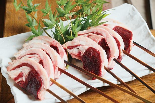 エゾジカの仔ジカロース肉も炭火焼きに。とろけるような脂の甘味と、力強い赤身の味が楽しめる / 柳家