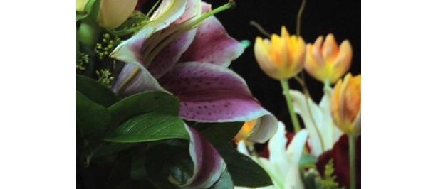 花の生産農家・JA土佐あき花き部 ゆり名人の協賛、日比谷花壇の協力でユリの花を販売