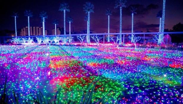 かしイルミえん~光の楽園~ / 夜の遊園地がキラキラに!パワーアップしたイルミネーション