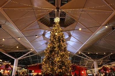 巨大なツリーがセントレアをクリスマスの雰囲気に彩る