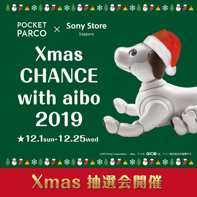 POCKET PARCO×Sony Store Sapporo Xmas CHANCE with aibo 2019