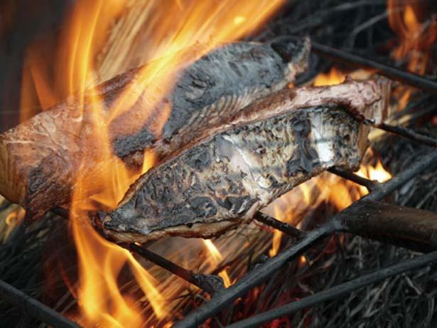 高知の名産カツオを使った料理は必食/漁師酒場 あらき