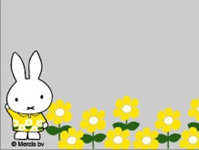 「ダイナミックフォト」のフレームその4。黄色いお花に囲まれて