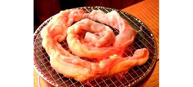 「炭火ホルモン サカイ食堂」の「とぐろホルモン」(980円)。脂の甘みとうま味が口の中でジュワッとあふれる
