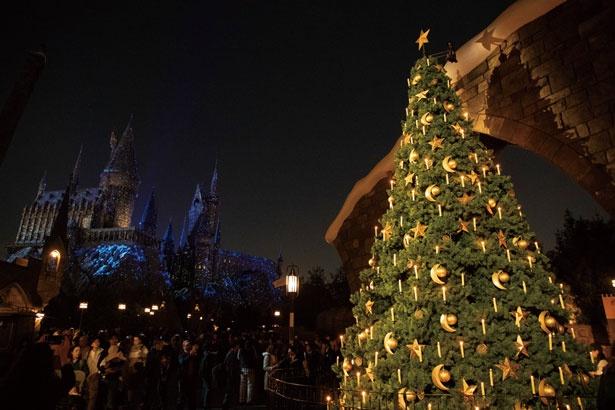 大きな魔法界のツリー。先端には魔女が回る魔法界ならではのオーナメントが/ユニバーサル・スタジオ・ジャパン「ホグズミード村のクリスマス・ツリー」