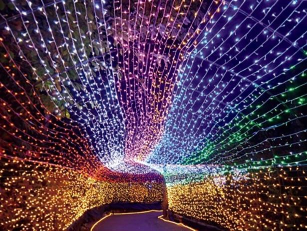 7色に輝く「虹のトンネル」 / 東武ワールドスクウェア