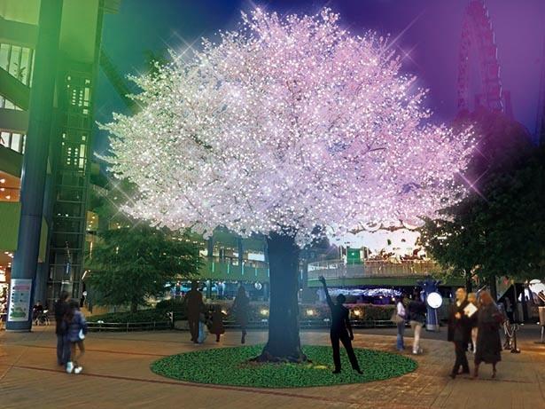"""""""和""""テーマにした高さ6.5メートルの「サクラのイルミ」 / 東京ドームシティー"""