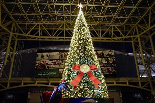 クリスマスツリーは阪神競馬場正門付近に設置されている