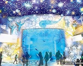 """東京近郊の水族館で楽しめるイルミネーション4選!""""流氷の天使""""クリオネのオブジェは必見"""