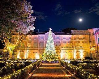 箱根でイルミネーション&日帰り温泉旅!3つの美術館&ミュージアムが光り輝く